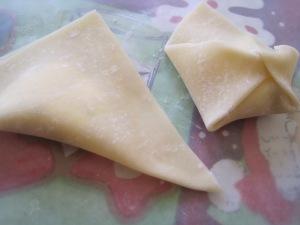 wontons-folded